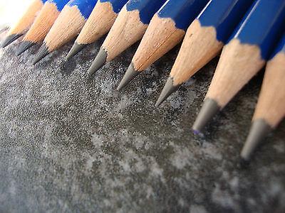Lyra Robinson Art Pencils Graphite Drawing Sketching Pencils [11 Grade Set] 2