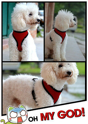 Soft Mesh Fabric Dog Puppy Pet Adjustable Harness   Lead Leash with Clip 2