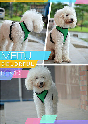 Soft Mesh Fabric Dog Puppy Pet Adjustable Harness   Lead Leash with Clip 7