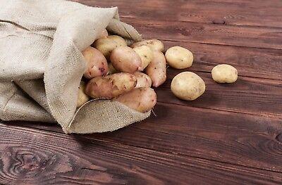 5 Burlap Sacks- Potato Sack Race Bags, Sandbags, Gunny Sack 22x36, Fish Bag 6