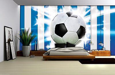 VLIES Tapete Fototapeten Tapeten  Fußball Ball Rasen Fußballplatz 14N1914VEXXL
