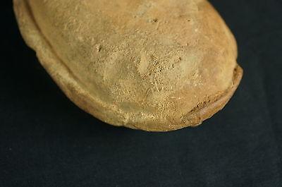"Antique Roman Pottery Oil lamp / artifact ca. 3rd c. AD 5 1/2"" [Y8-W6-A9-E9] 9"
