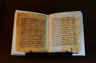 Papyrus 66 Manuscript, Facsimile 10