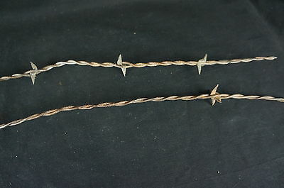 "Nice Antique Two Barbed Wire Fragments 21"" [Y7-W2-A8-E8] 2"