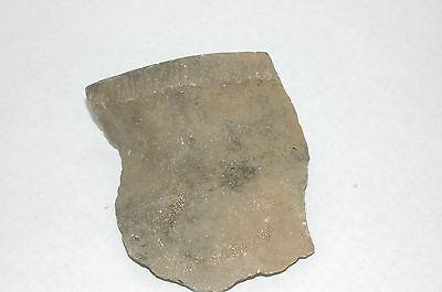Pre-Historic Hohokam Interesting Pottery Fragment 800-1450 AD  AZ NAA-221
