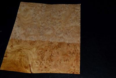 Oak Burl Raw Wood Veneer Sheets 7 x 18 inches 1//42nd                 E7222-36