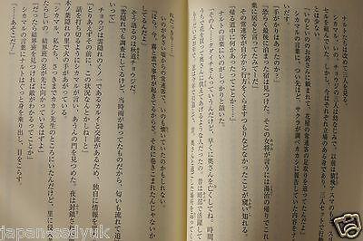 Japan Novel Naruto Sasuke Shinden