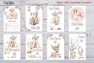 Baby Milestone Cards Boho Tribal Girls Pink Pack of 35 Full Set Or Age Only 17 2