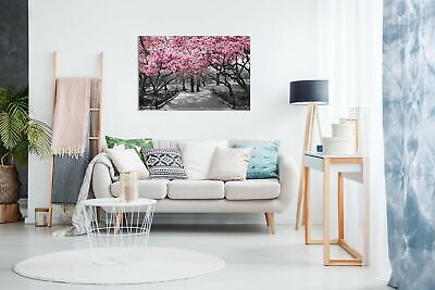 Black & White Wall Art Pink Blossoms Canvas Wall Art Picture Print 2