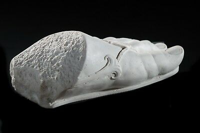 Marble Sculpture of the Foot of Colossus. Art, Gift, Ornament. 4