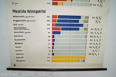 alte Rollkarte Rolltafel Lehrtafel Zusammensetzung Nahrungsmittel Nr. 3031