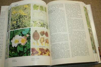 DDR-Lexikon Heilpflanzen, Drogen, Kräuter, Arzneipflanzen, 512 Abbildungen, 1989 7