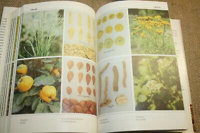 DDR-Lexikon Heilpflanzen, Drogen, Kräuter, Arzneipflanzen, 512 Abbildungen, 1989 3