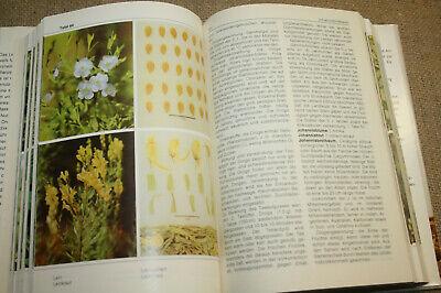 DDR-Lexikon Heilpflanzen, Drogen, Kräuter, Arzneipflanzen, 512 Abbildungen, 1989 6