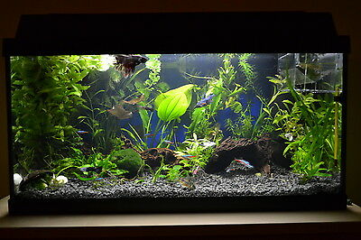NATURAL BLACK AQUARIUM SUBSTRATE(SAND - GRAVEL 2-5mm) IDEAL FOR PLANTS 7