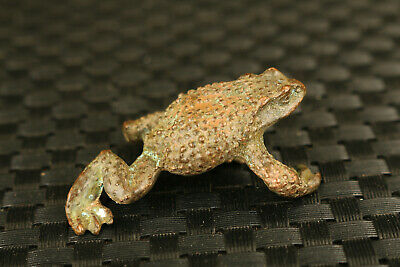 old Chinese bronze hand cast jinchan frog statue collectable ornament tea pet 3
