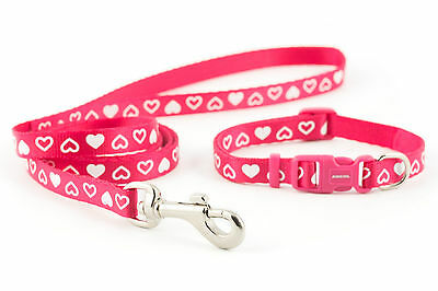 Ancol Collar and Lead In colors And Design Raspberry, Blue, Pink, Red and Black 2