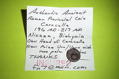 RARE Ancient ROMAN COIN prize urn CARACALLA 196 AD-217 AD NICAEA BITHYNIA vase 3