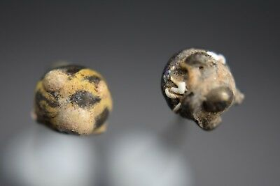 Group of 2 ancient Phoenician decorated glass pins 2nd - 1st millennium BC 10