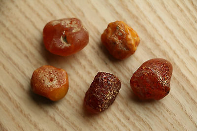 Set of Amber from the Viking-Age - 8-10 AD 7