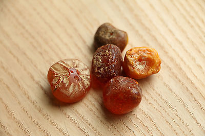 Set of Amber from the Viking-Age - 8-10 AD 2
