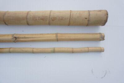 20 Bambusstangen 1,95m 3//4cm Bambusstange Bambusrohr