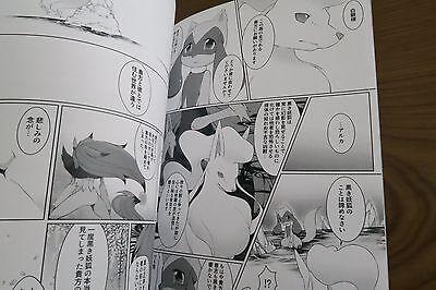 Doujinshi POKEMON Zoroark X Lucario A5 30page Nova runa Mitsuhime furry kemono