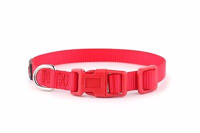 ESSENTIAL Dog Collar and Matching Lead Set - Puppy and Dog Sets -  RichPaw 9