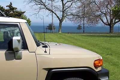 "06-09 Chevrolet Trailblazer 12/"" Black Spring Stainless AM//FM Antenna Mast Fits"