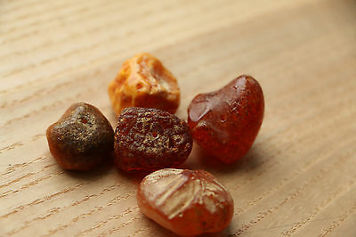 Set of Amber from the Viking-Age - 8-10 AD 3