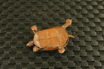 chinese Red copper bronze hand cast tortoise statue netsuke collection 6