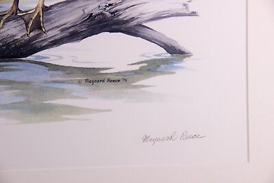 """Lot of """"Covey Rose Bobwhite"""" Colored Lithograph Print Signed Maynard Reece Boxed"""