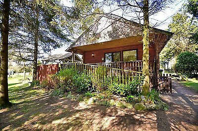 1 Night March Midweek Break in Log Cabin with Hot-Tub at Rocklands Lodges 4