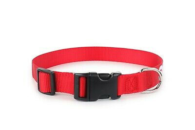 ALL ACCESS CANINE Service Dog - Emotional Support Animal Dog Collar and Tag XS L 4