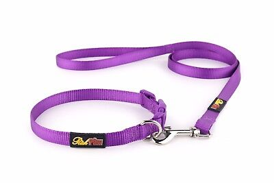 ESSENTIAL Dog Collar and Matching Lead Set - Puppy and Dog Sets -  RichPaw 4