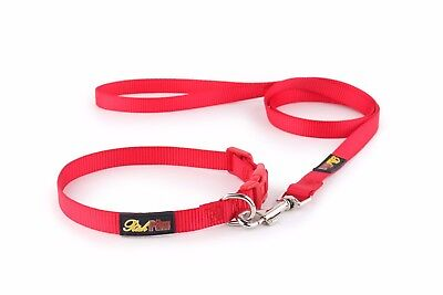 ESSENTIAL Dog Collar and Matching Lead Set - Puppy and Dog Sets -  RichPaw 3