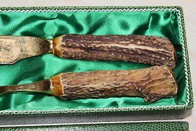 Vieux Viande Couverts avec Hirschhorn Poignée dans Étui Doré 33cm 6