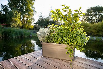 Pflanztrog Blumenkasten Bewässerungskasten mit Rollen u. Bewässerungssystem 5