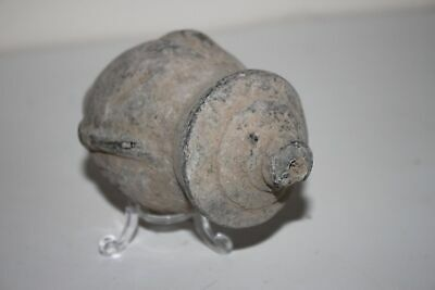 Ancient Byzantine Ceramic 'GREEK FIRE' Grenad 10th Century AD 4