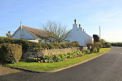 3 Bed Anglesey Holiday cottage Pet friendly  Slp 6/7  short breaks 2