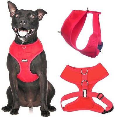 Padded Waterproof Adjustable Pet Puppy Dogs Non Pull Soft Vest Harness or Sets 4