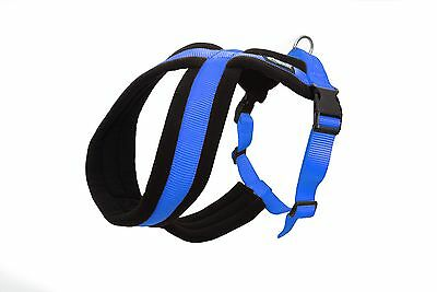 Dexil Elite Range Ultra Comfort Strong Cross Dog Harness!! 6