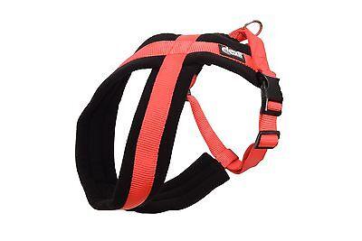 Dexil Elite Range Ultra Comfort Strong Cross Dog Harness!! 2