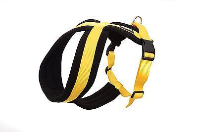 Dexil Elite Range Ultra Comfort Strong Cross Dog Harness!! 4