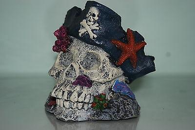 Aquarium Detailed Large Skull & Pirate Hat Decoration 15 x 14 x 14.5 cms 3
