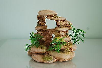 Aquarium Sand Ring Ornament & Plants 12.5 cms Suitable For All Aquariums 2