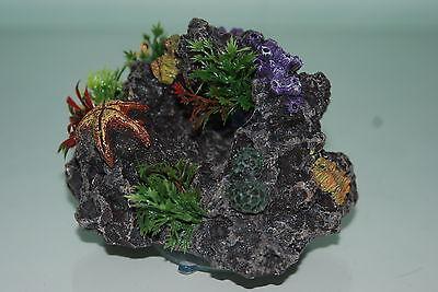 Aquarium Reef Rock + Suckers For Attatching To Aquarium Glass 11.5 x 7.5 x 11cm 2
