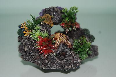 Aquarium Reef Rock + Suckers For Attatching To Aquarium Glass 11.5 x 7.5 x 11cm 3