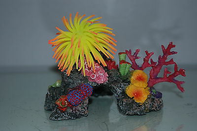 Aquarium Coral with Yellow & Orange  Anemone On Coral Rock 16 x 10 x 12 cms 5