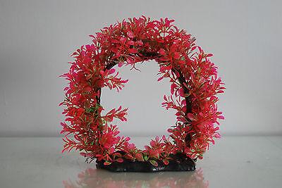 Aquarium Realistic Large Red Ring Plant 22 x 8 x 21 cms For All Aquariums 3